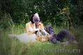 Свадебный фотограф. Курган,  Шадринск.